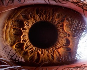 What resolution does the human eye see in?